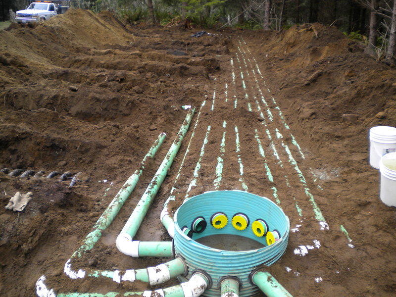 Ordinary Kitsap Septic 2 5 Multiple Line Distrubution